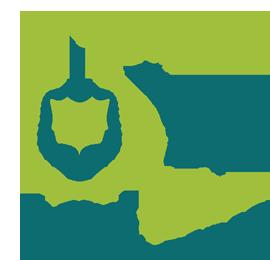 YUP! Institute Miền  Trung